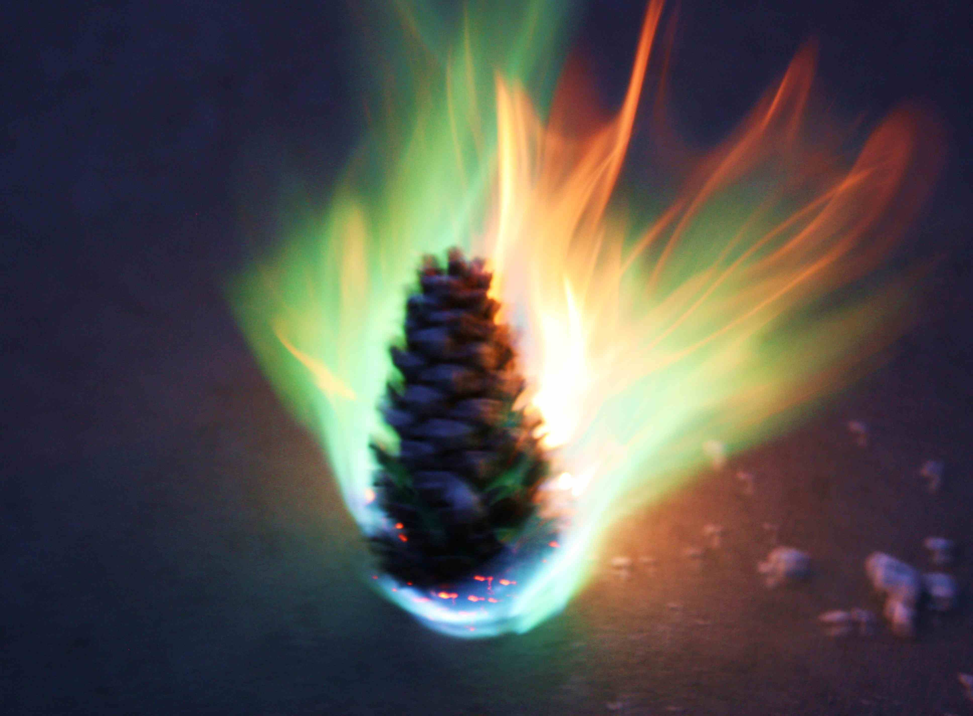 It's easy to make colored fire pinecones.