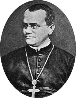 Gregor Mendel is known as the Father of Genetics