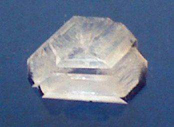 This alum crystal grew overnight.