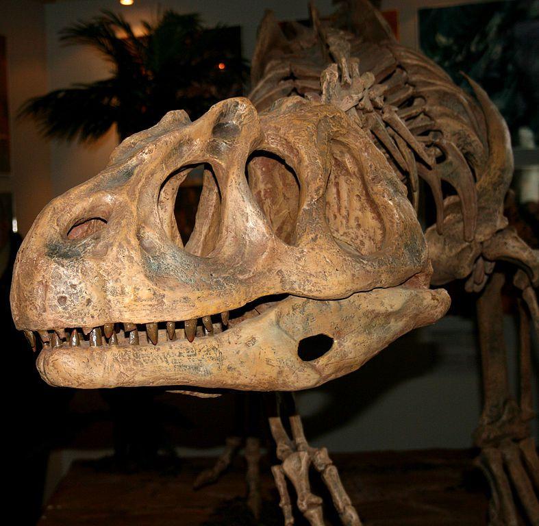 Piatnitzkysaurus