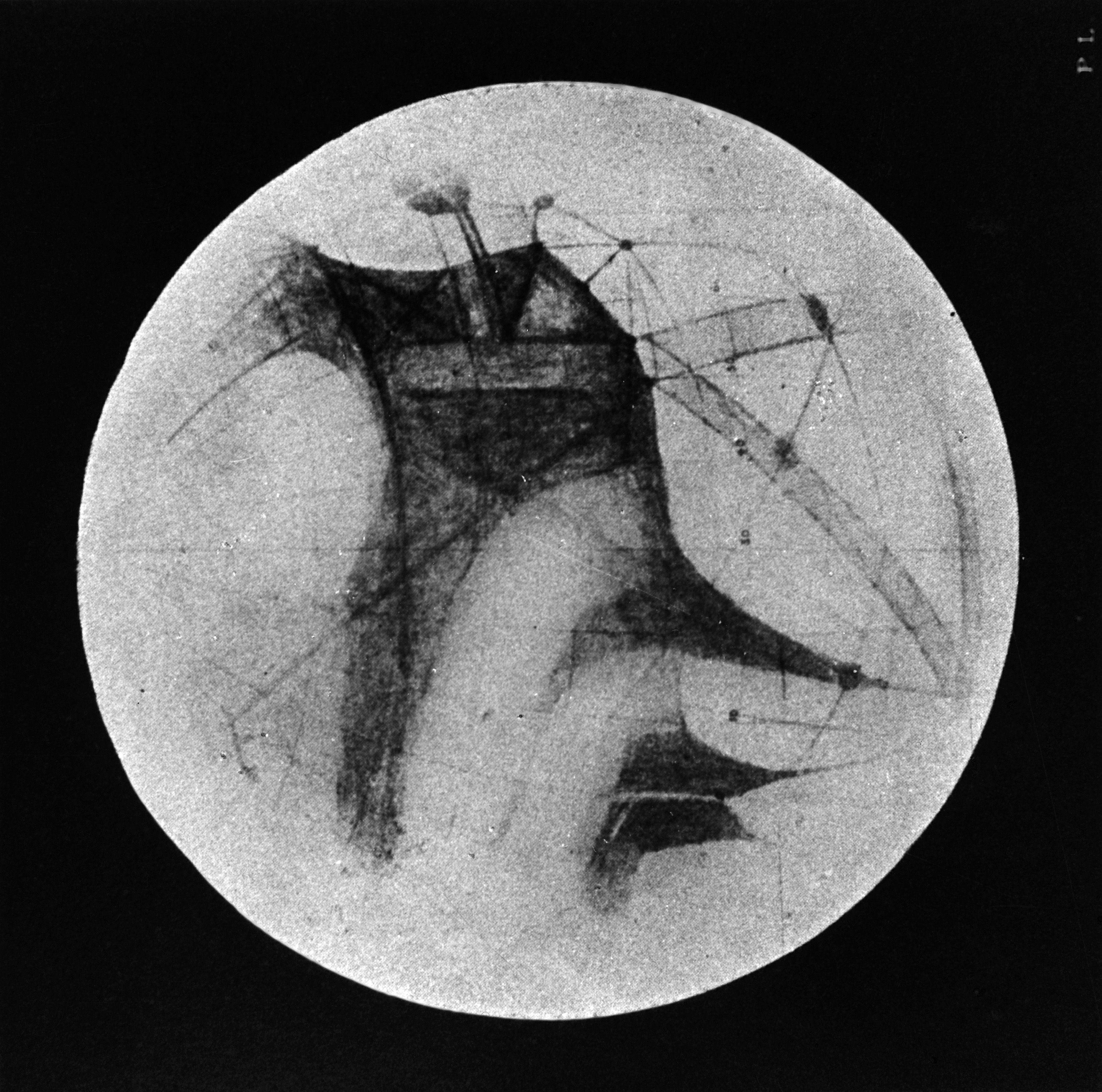 """Ένα σχέδιο του Percival Lowell (1896) που απεικονίζει """"κανάλια"""" και σκοτεινές περιοχές στον Άρη."""