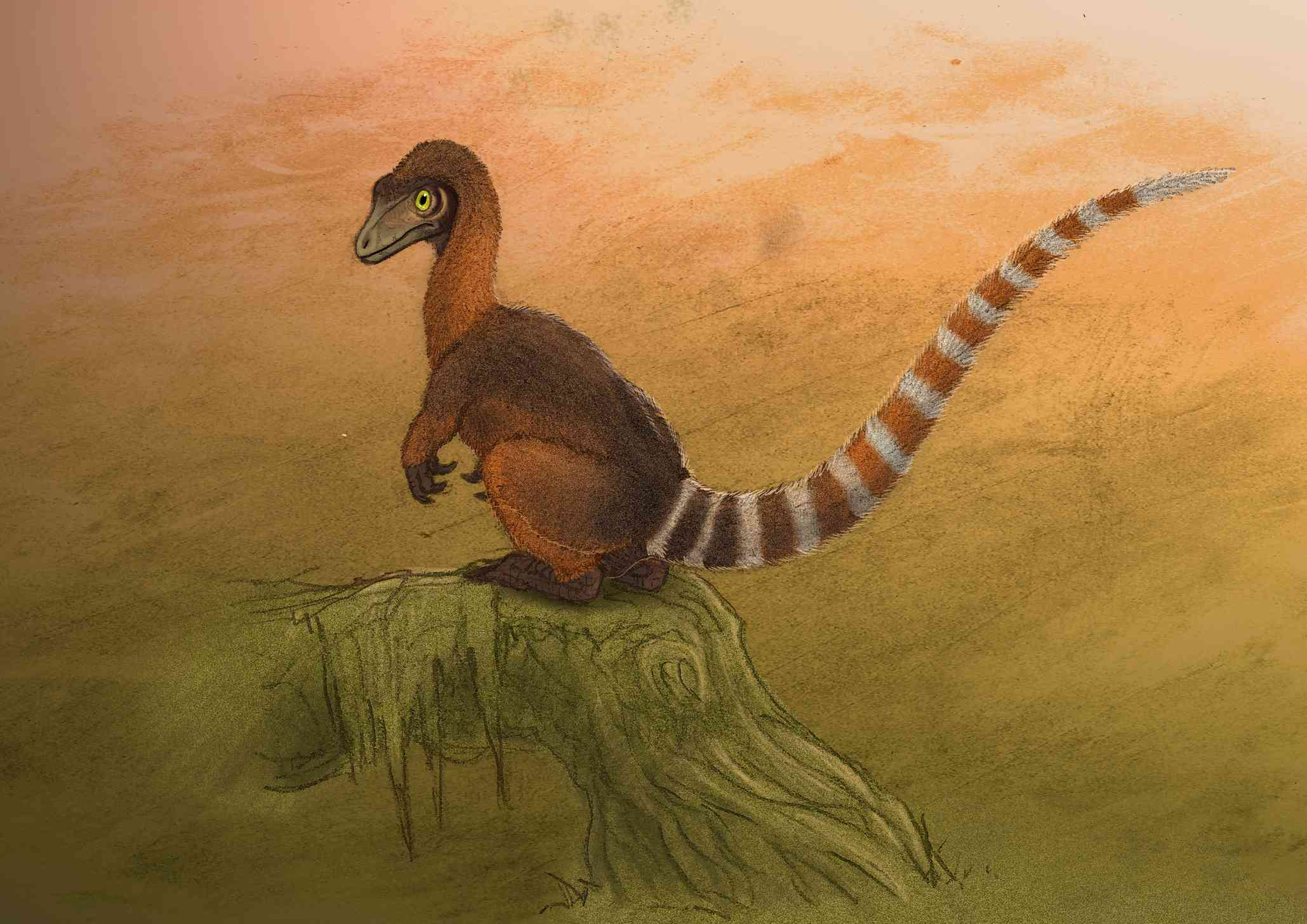 A Sinosauropteryx dinosaur resting on a log.