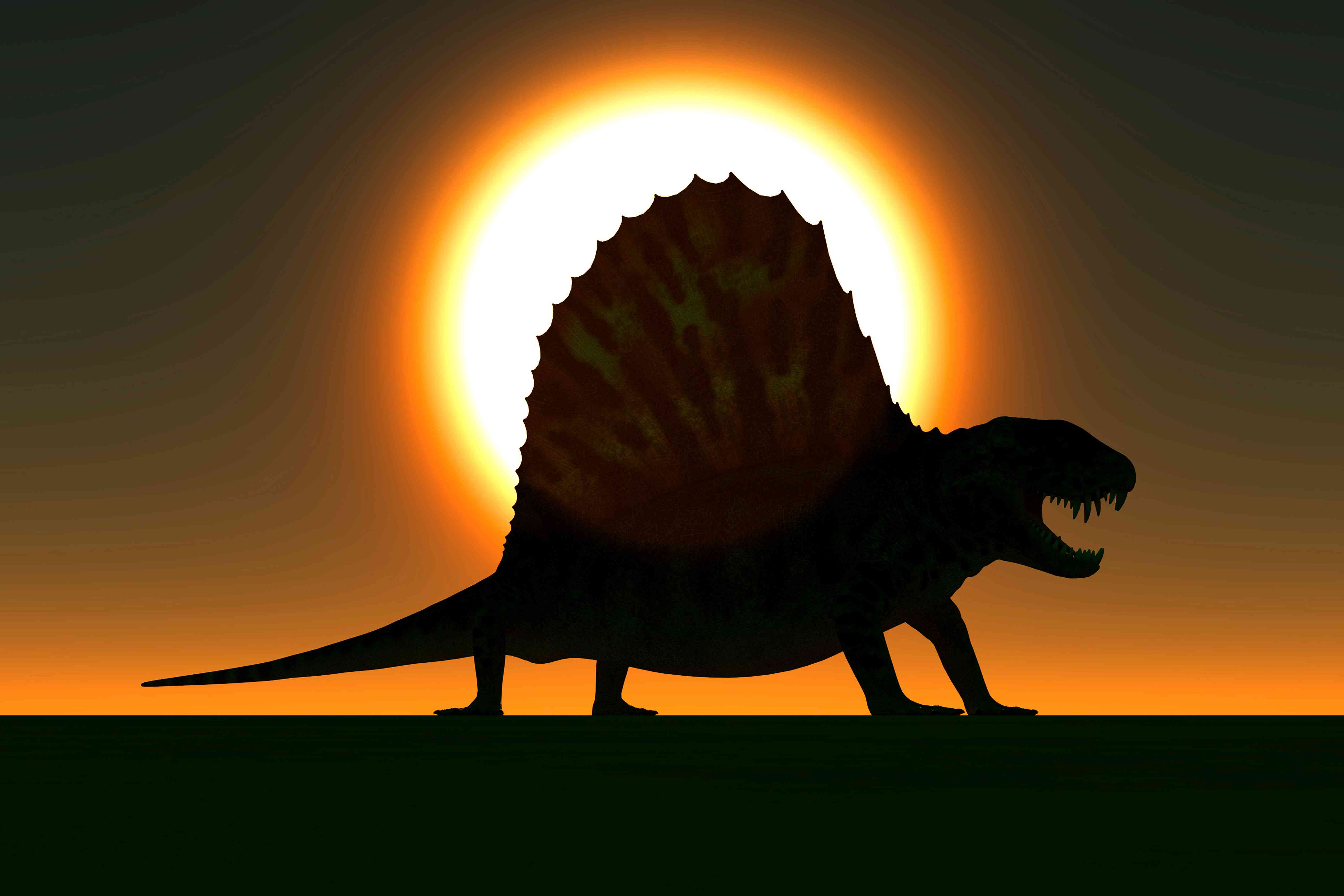 A sail-backed Dimetrodon, from Earth's Permian period, is silhouetted against a sunset