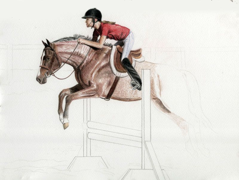 Draw A Horse Show Jumper In Colored Pencil