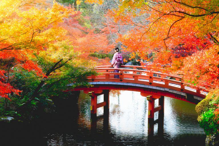 Autumn park, Japan