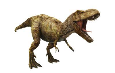 10 Facts About Albertosaurus
