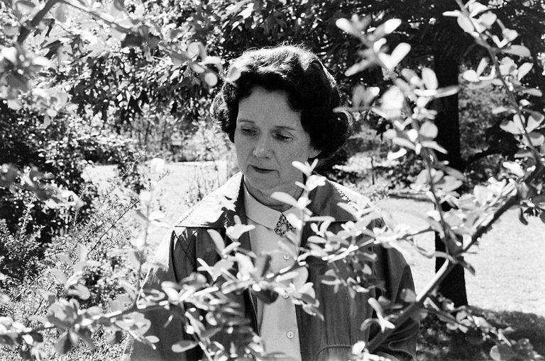 American marine biologist and author Rachel Carson, Maryland, September 24, 1962