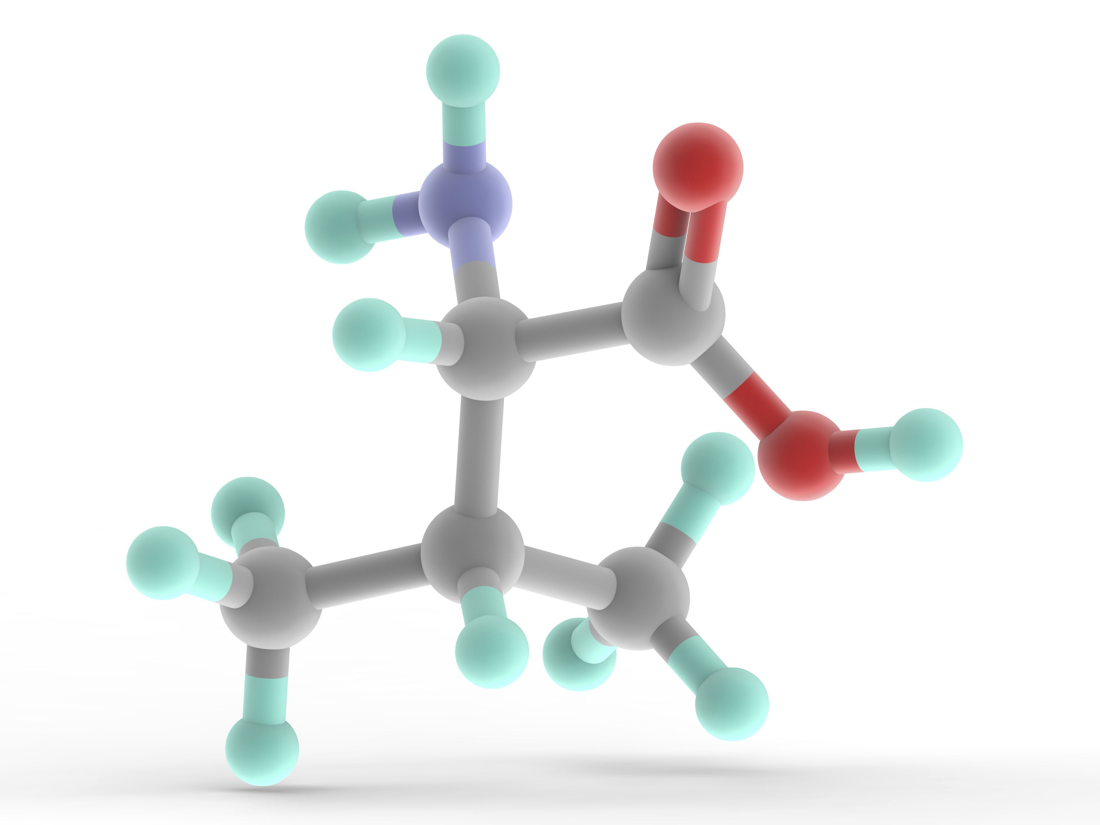 what is an example of an organic molecule