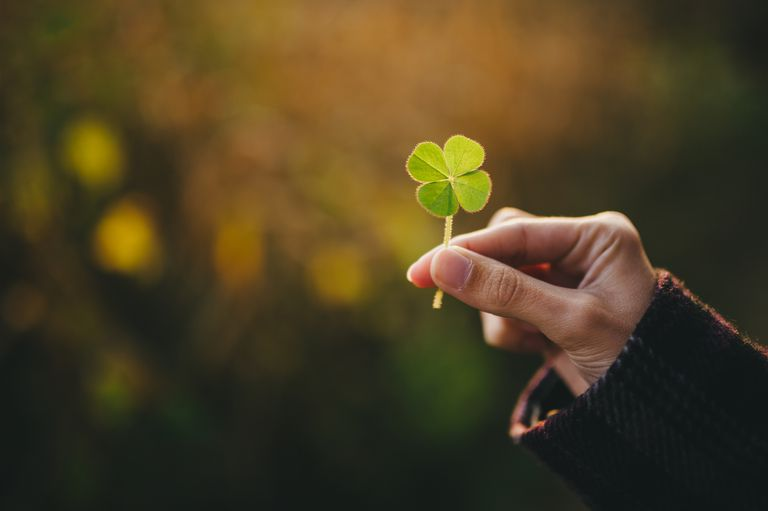 I got Start searching for a 4-leaf clover.. How Much Do You Know About St. Patrick's Day?