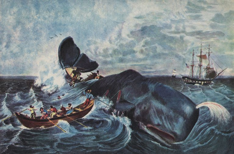 Lithograph of the capture of a sperm whale