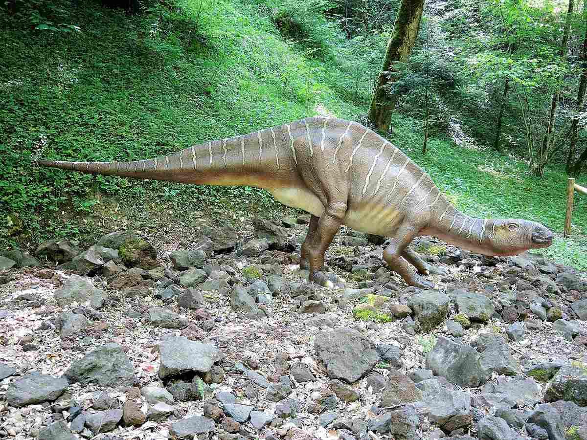 Iguanodon statue on a rock pile outside.