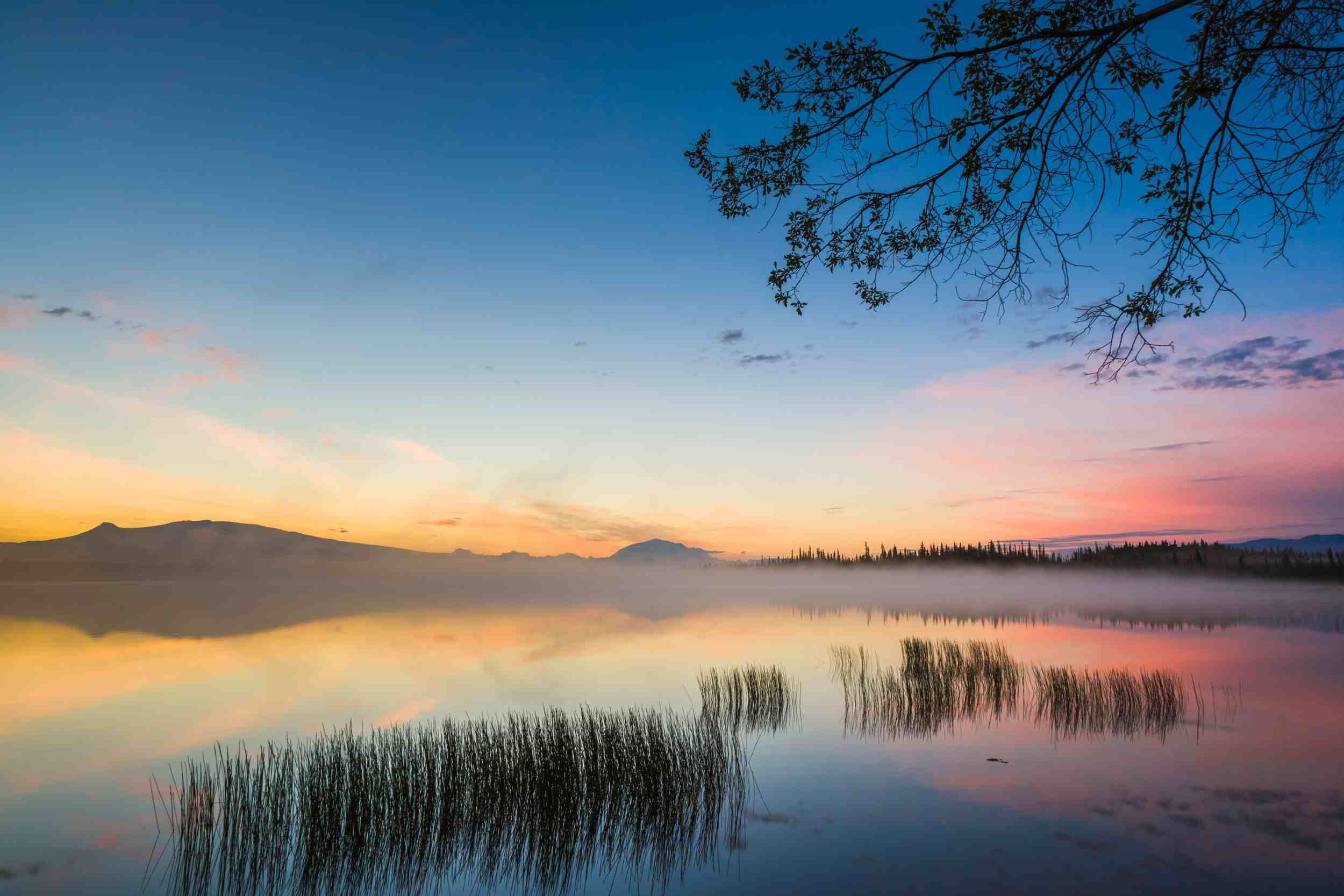 Wrangell–St Elias National Park & Preserve