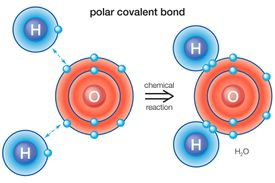 A polar bond is a type of covalent chemical bond.