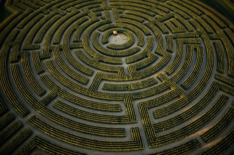 The largest plant maze in the world, at Reignac sur Indre, Indre et Loire Department, France