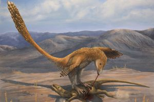 Deinonychus in the act of eating