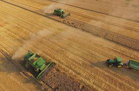 Aerial view of tractors harvesting grain.