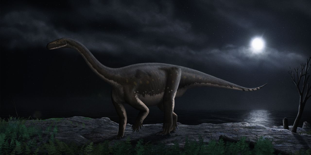 Melanorosaurus
