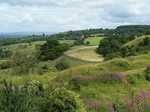 View of the Cotswolds from Crickley Hill