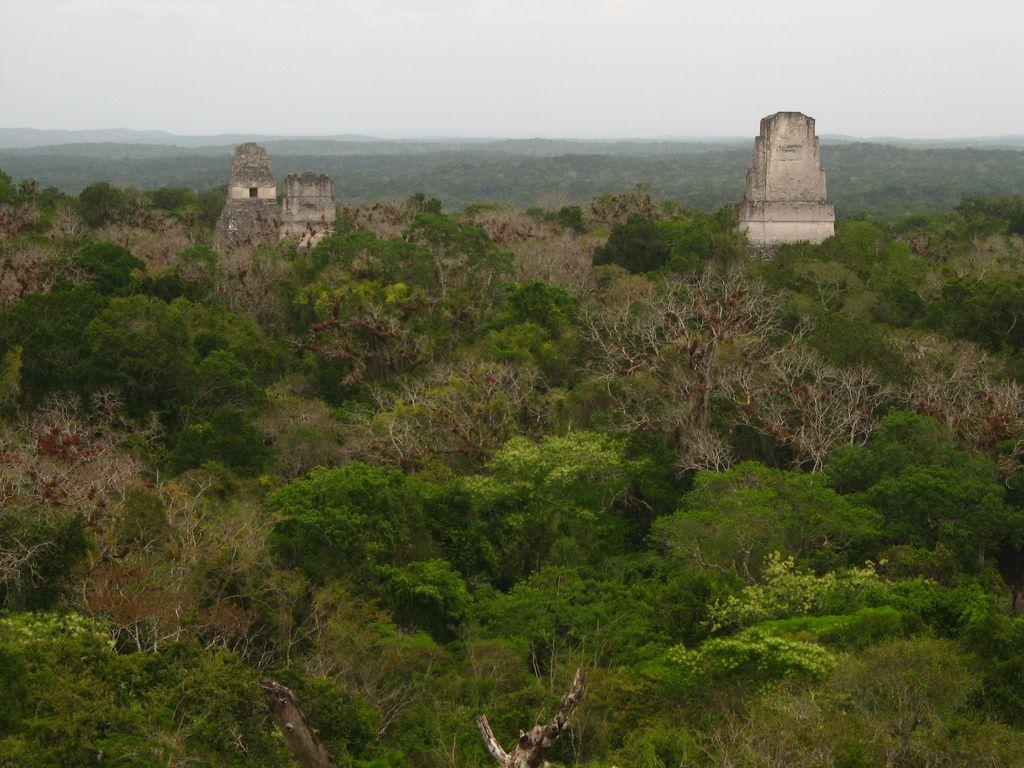 Tikal - the Rebel Base