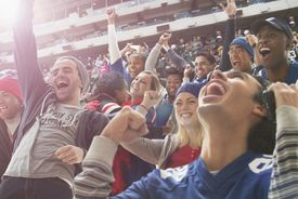 Fans cheering at a sporting event.
