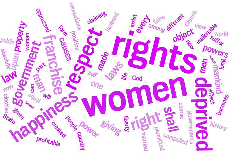Declaration of Sentiments Word Cloud