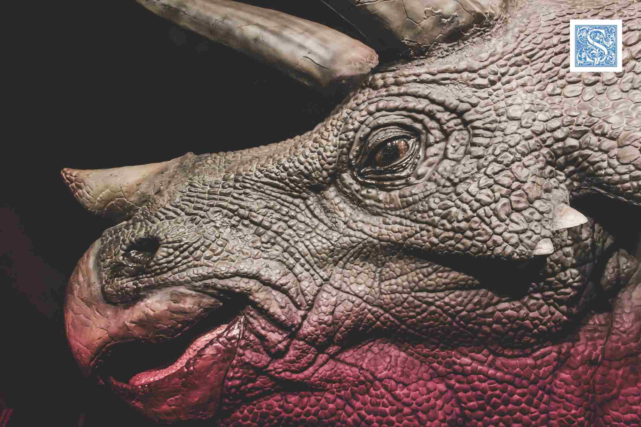 Close-up profile of a Triceratops showing pebbly patterned skin and parrotlike beak