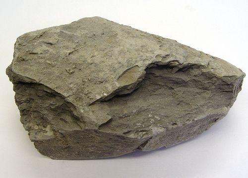 Claystone is a very fine-grained sedimentary rock consisting of mostly clay