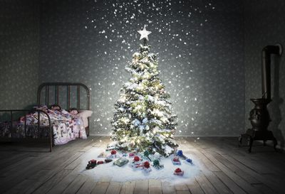 The Value Of Aluminum Christmas Trees