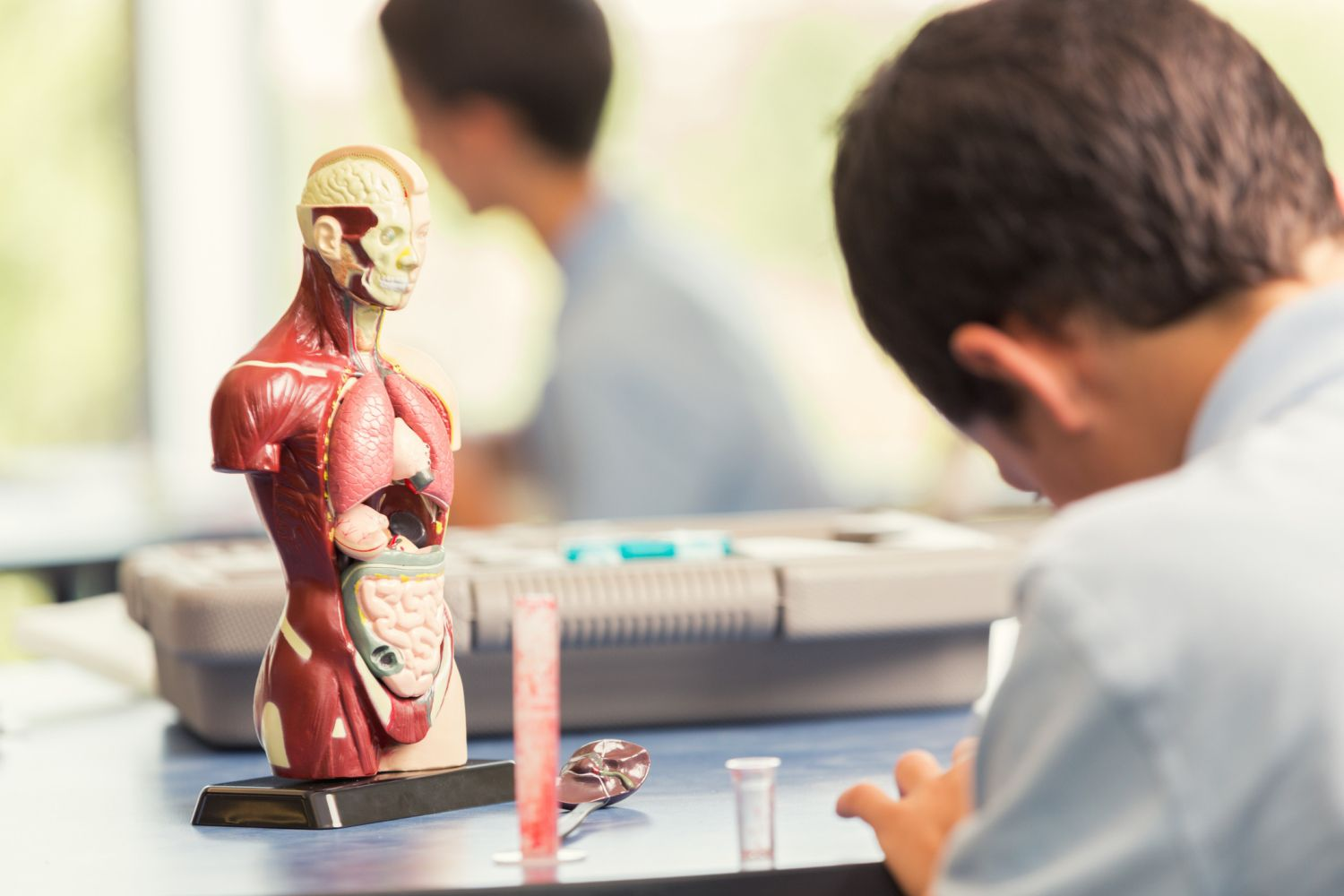 Human Body Project Ideas - Biology and Behavior