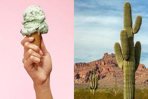 Dessert vs Desert