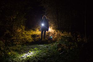 Person holding a flashlight in a dark, wooded area.