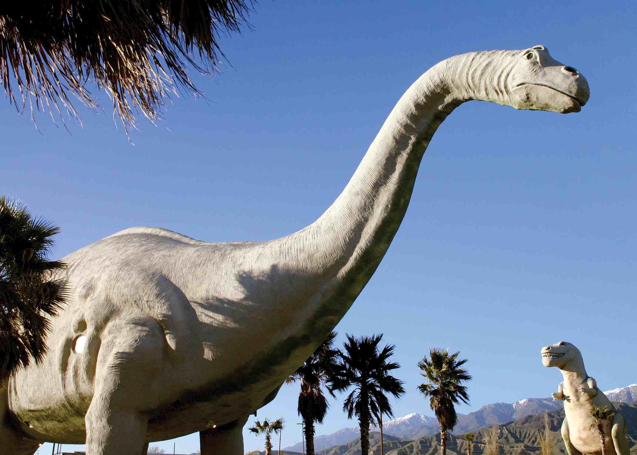 Dinosaur plaster