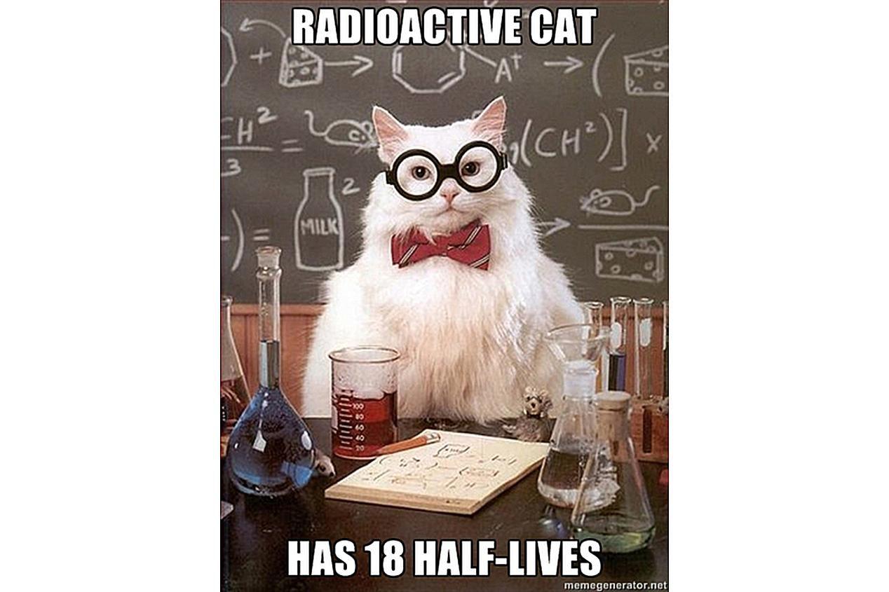 Chemistry Cat has nine lives or 18 half-lives.