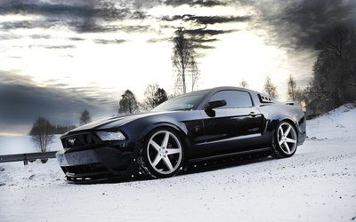 Black Mustang Wintry Day