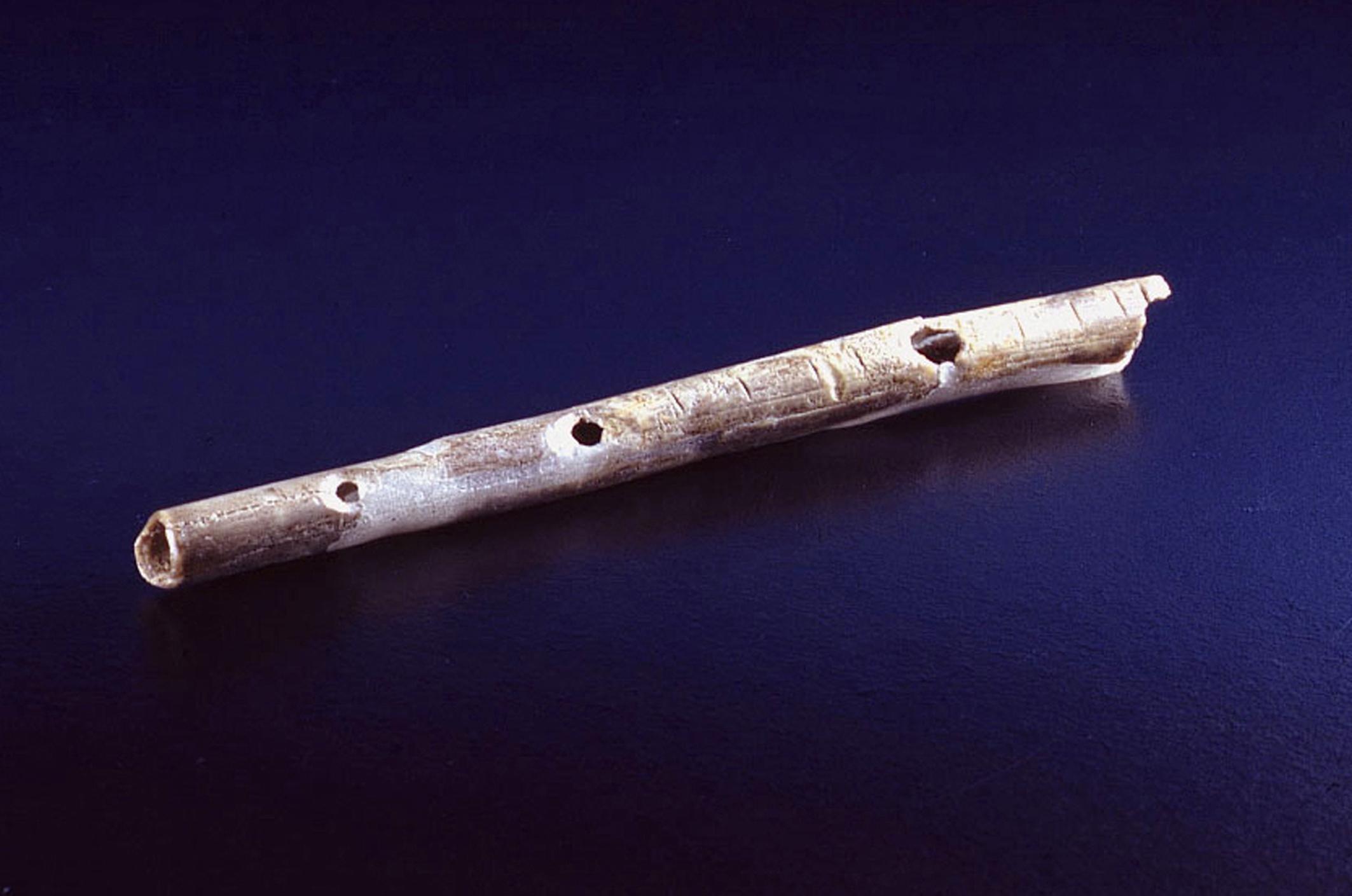 Geißenklösterle Swan Bone Flute