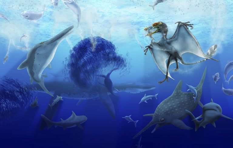 Hybodus and other prehistoric creatures