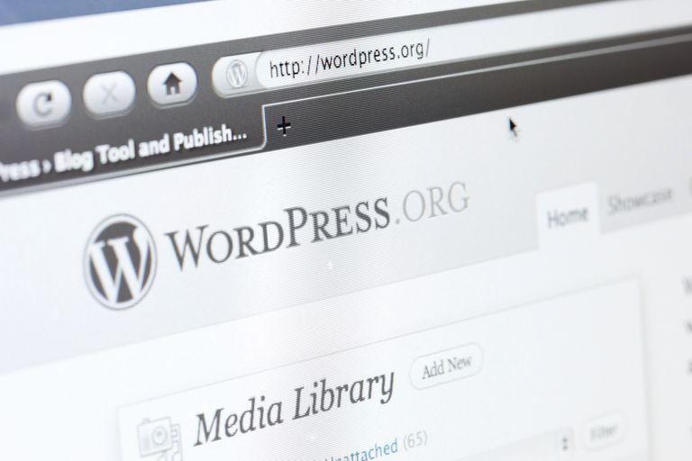 A computer screen showing WordPress.org.