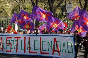demonstration (manifestantes) for Spanish lesson
