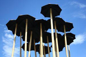Umbrella forest