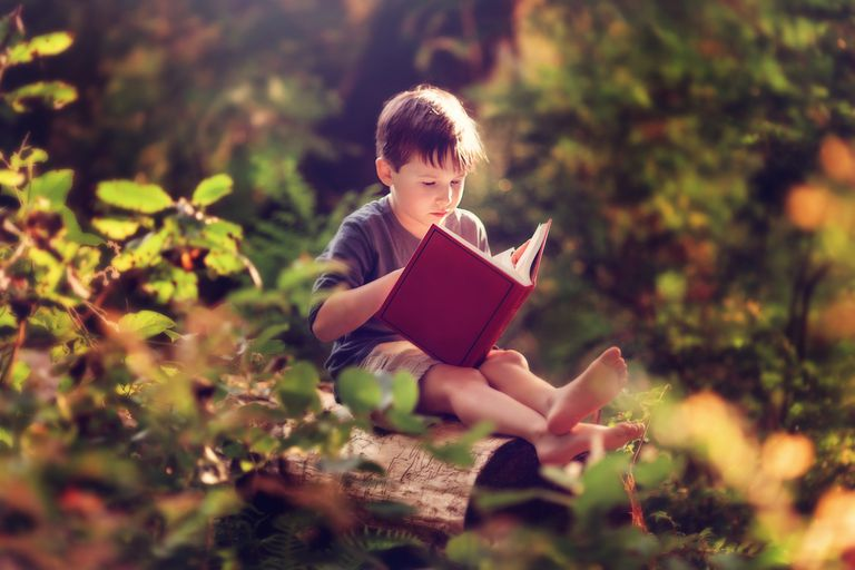 Young-boy-reading-red-book-in-forest