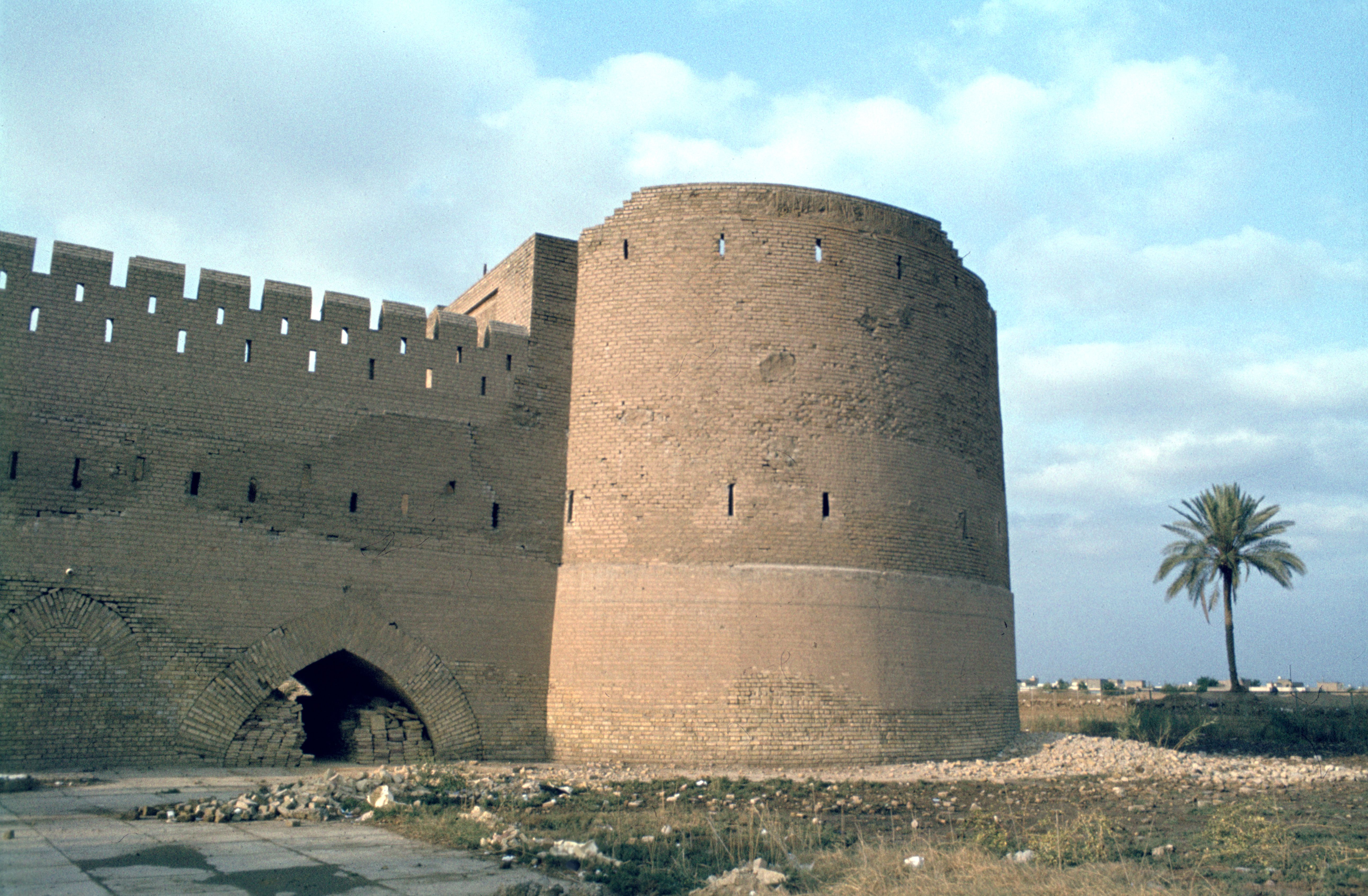 old fortification near palm tree in Iraq