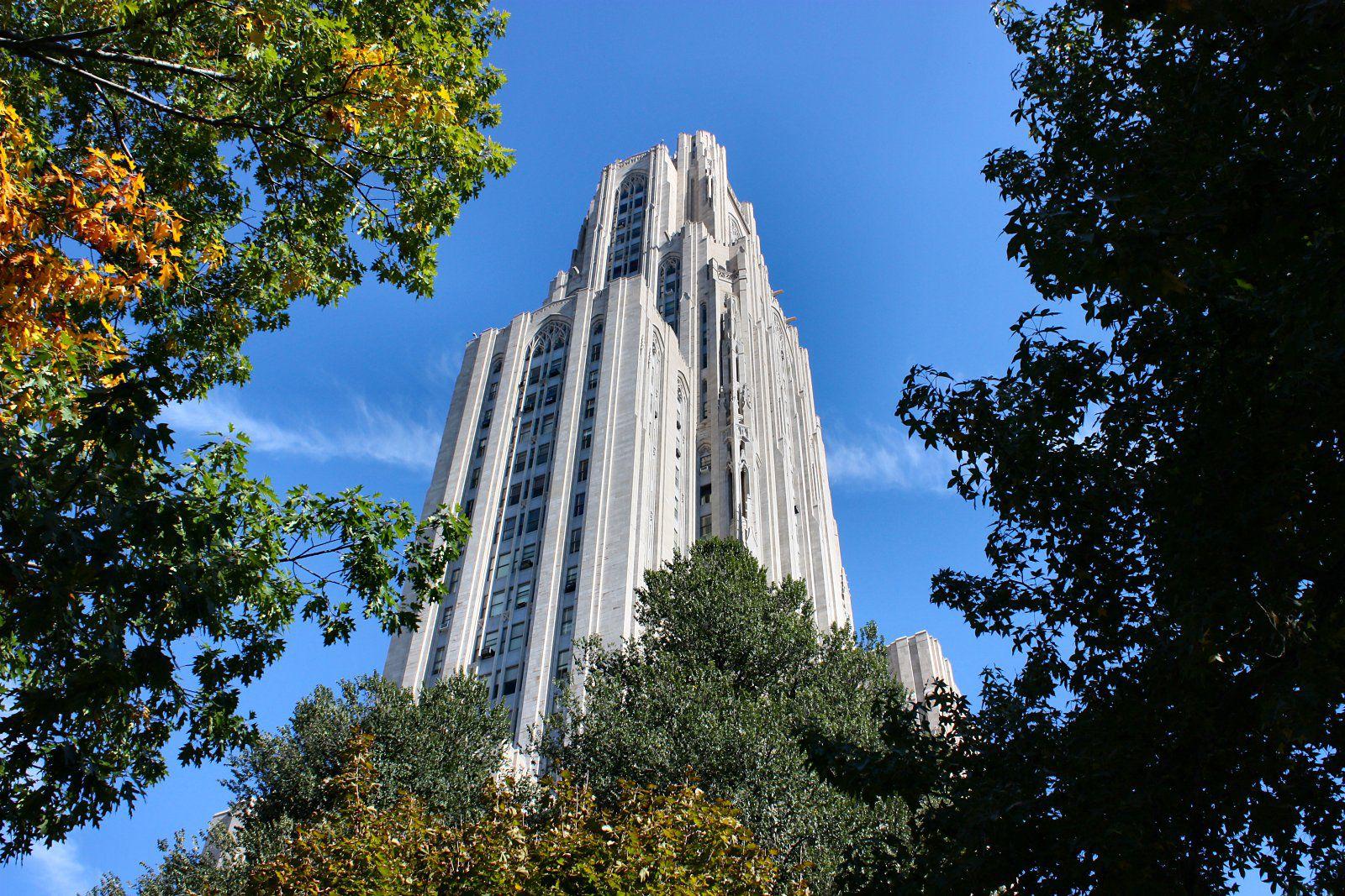 Pitt admissions essay