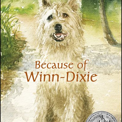 because of winn dixie conflict