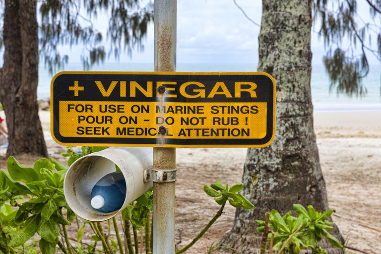 Vinegar at a beach to treat stings from jellyfish and other marine animals