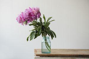 Cut flowers in a glass jar