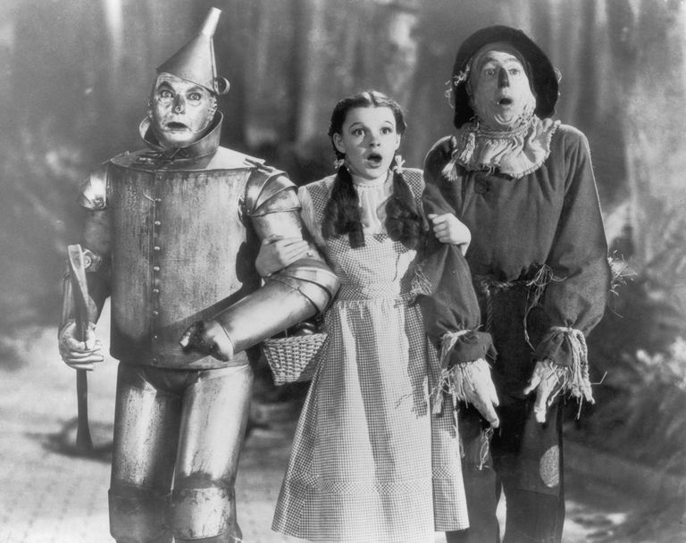 Image result for tin man