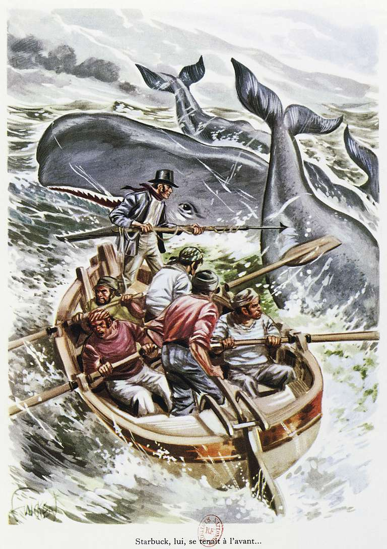 Starbuck hunting whales, illustration for Moby Dick by Herman Melville