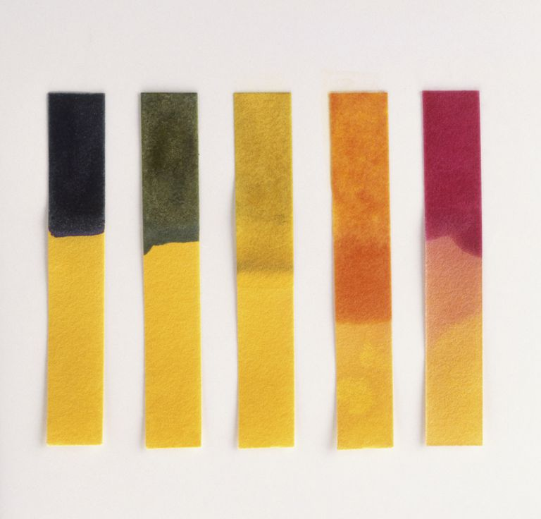 Differently coloured strips of litmus paper illustrating the 'acid to alkali' spectrum in liquids, close up.