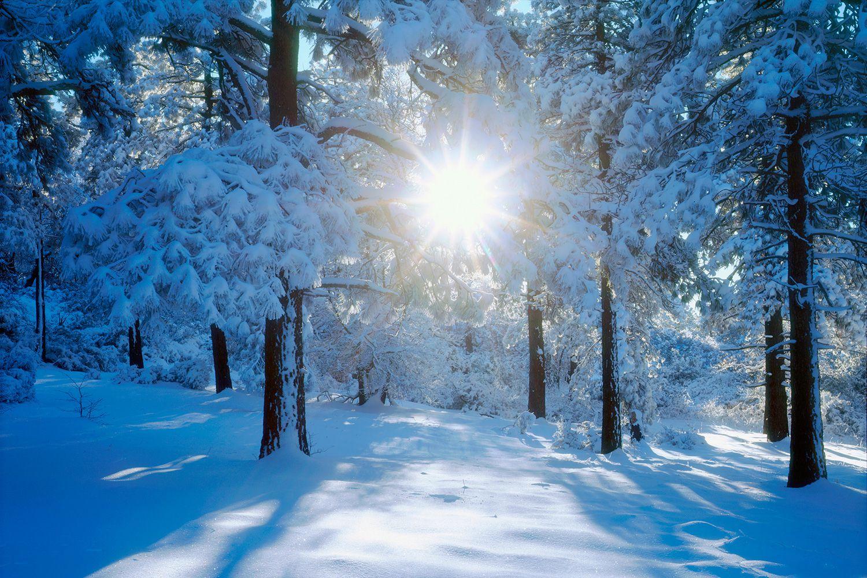 Celebrating Yule The Winter Solstice