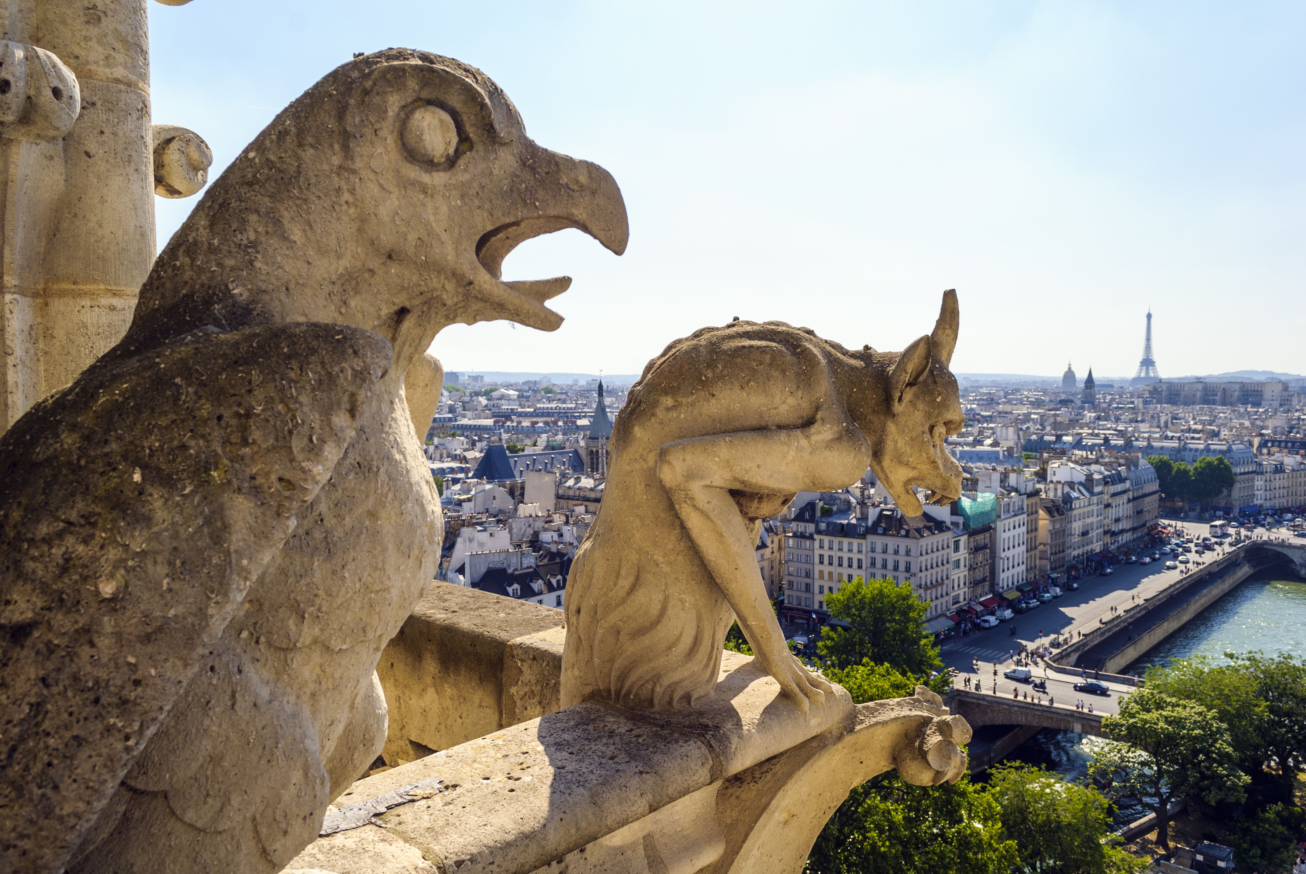 Gargoyles on roof of Notre Dame, Paris, France